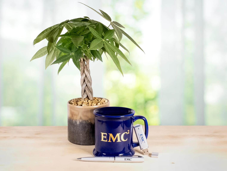 EMC Promotional Mug